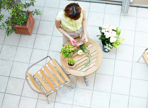 フラワーアレンジをする女性の写真素材 [FYI01859397]