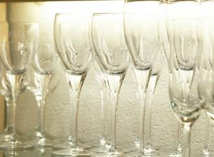 並ぶワイングラスの写真素材 [FYI01860894]