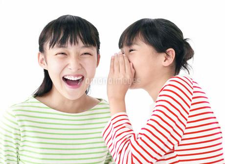 内緒話をする女の子の写真素材 [FYI01861312]