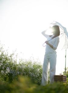 日傘を差す日本人女性の写真素材 [FYI01862513]