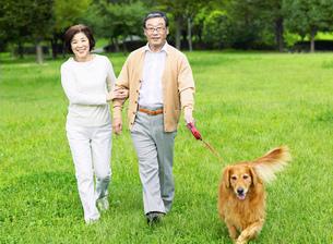 緑と日本人の中高年夫婦と犬の写真素材 [FYI01863384]