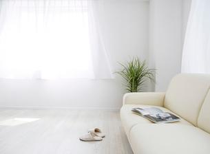 ソファと観葉植物のあるリビングルームの写真素材 [FYI01865935]