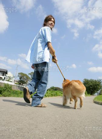 犬と散歩をする日本人男性の写真素材 [FYI01866421]