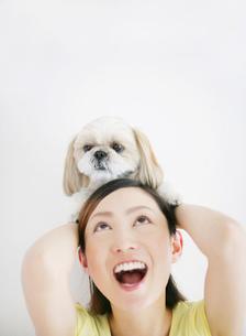 犬(シーズ)と女性の写真素材 [FYI01866722]
