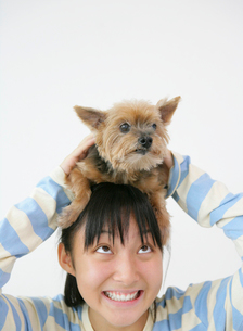 犬を抱き上げる日本人の女の子の写真素材 [FYI01866880]