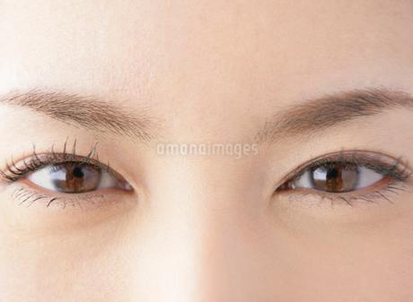 日本人女性の目元の写真素材 [FYI01867261]
