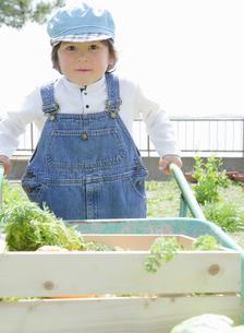 一輪車で野菜を運ぶ男の子の写真素材 [FYI01868557]