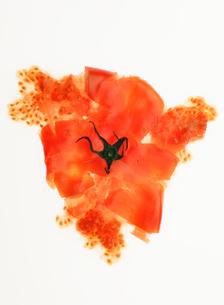 光の中に置かれた果肉の飛び出したトマトの写真素材 [FYI01868609]