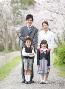 桜並木に並んで立つ家族の写真素材 [FYI01869150]