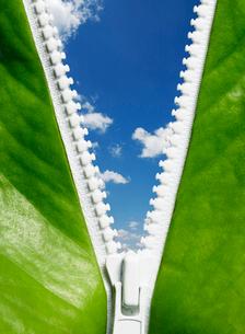 白いファスナーの向こうに見える青空の写真素材 [FYI01869522]