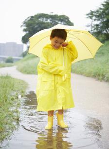黄色いカッパを着た男の子の写真素材 [FYI01870100]
