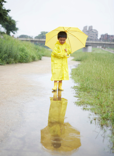 水たまりを歩く傘をさした男の子の写真素材 [FYI01870379]
