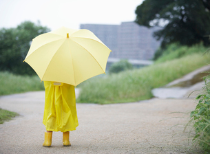 傘をさした男の子の後ろ姿の写真素材 [FYI01870413]