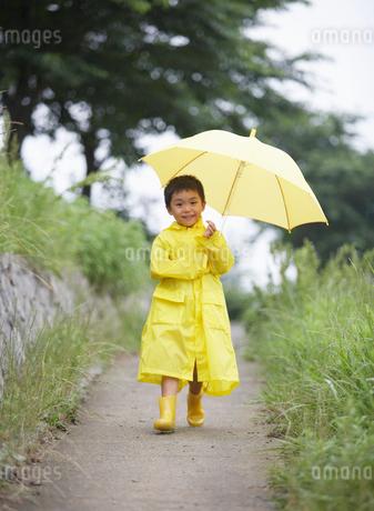傘をさした男の子の写真素材 [FYI01870519]