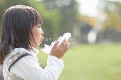 掌の羽根に息を吹く女の子の写真素材 [FYI01871058]