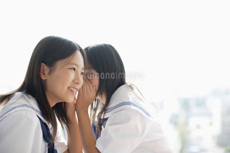 内緒話をする女子中学生の写真素材 [FYI01872107]