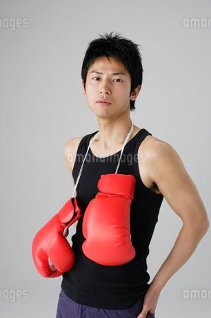 ボクシンググローブと男性の写真素材 [FYI01873972]