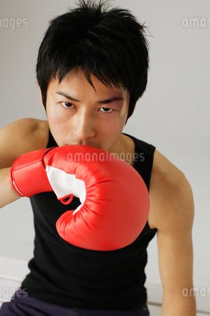 ボクシンググローブと男性の写真素材 [FYI01874110]