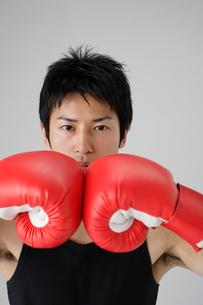 ボクシンググローブと男性の写真素材 [FYI01874112]