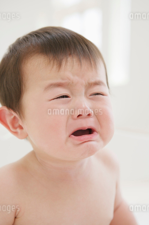 泣く赤ちゃんの写真素材 [FYI01874144]