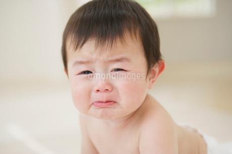 泣く赤ちゃんの写真素材 [FYI01874966]