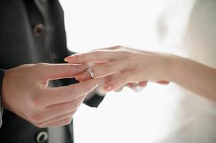 指輪交換をする新郎新婦の写真素材 [FYI01877267]