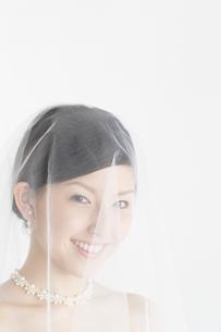 ベール姿の日本人女性の写真素材 [FYI01877384]