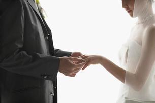 指輪を交換する新郎新婦の写真素材 [FYI01877392]