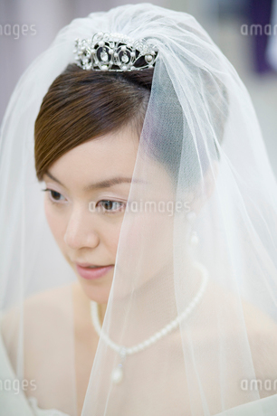 ベールをつけた新婦の写真素材 [FYI01880916]