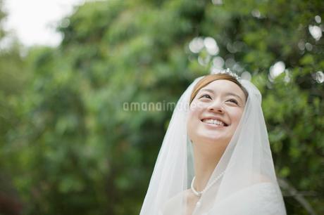 ベールをつけた新婦の写真素材 [FYI01881422]