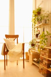窓辺の椅子とクッションの写真素材 [FYI01882878]