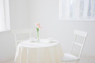 テーブルの上の花の写真素材 [FYI01883619]