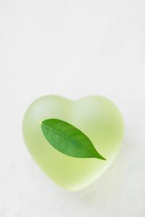 ハートと葉っぱの写真素材 [FYI01884195]