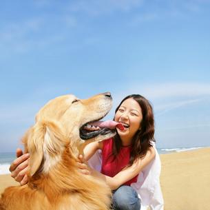 犬と女性の写真素材 [FYI01884793]