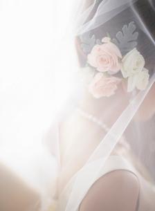 ウェディングドレス姿の女性の写真素材 [FYI01884875]
