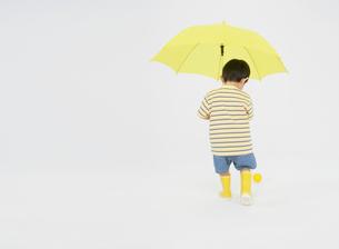 黄色い傘と男の子の写真素材 [FYI01885291]