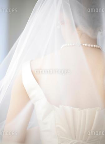 ウェディングドレス姿の女性の写真素材 [FYI01885684]
