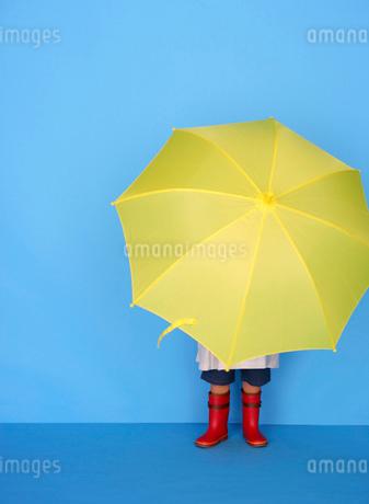 黄色い傘をさす男の子の写真素材 [FYI01886613]