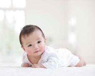カーペットの上に寝そべる赤ちゃんの写真素材 [FYI01886626]