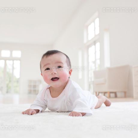 カーペットの上に寝そべる赤ちゃんの写真素材 [FYI01887425]