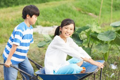 一輪車に乗って遊ぶ姉弟の写真素材 [FYI01887579]