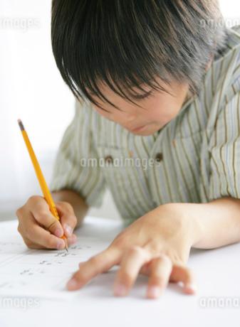 勉強をする男の子の写真素材 [FYI01889965]