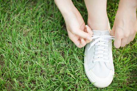 靴の紐を結ぶ女性の写真素材 [FYI01891287]