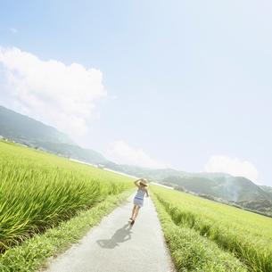 田んぼの間を走る女の子の後ろ姿の写真素材 [FYI01893501]