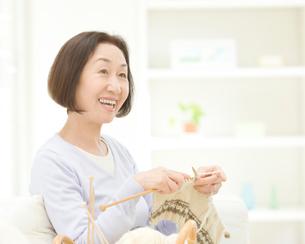 編み物をするシニア女性の写真素材 [FYI01895310]