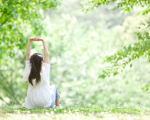 新緑の中で伸びをする女性の後ろ姿の写真素材 [FYI01897719]