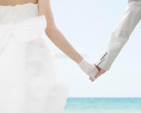 手を繋ぐ新郎新婦の後ろ姿の写真素材 [FYI01898840]