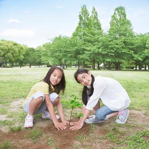 植樹をする子供たちの写真素材 [FYI01899705]