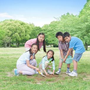 植樹をする子供たちの写真素材 [FYI01900320]