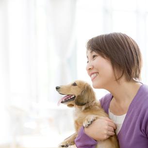 犬を抱く女性の写真素材 [FYI01900511]